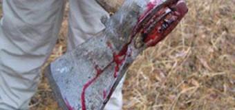 На Волині підліток-циган порубав на частини односельчанина