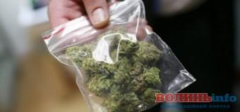 У двох волинян виявили марихуану прямо на вулиці