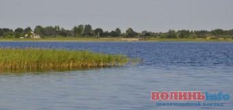 Депутати наполягають, щоб у працівника СБУ з Луцька забрали землю біля Пісочного