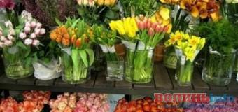 У Луцьку придумали нове місце для квіткового ринку, але квітникарі проти