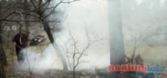 Пояснили, до чого призводить лучан дим від спалювання листя