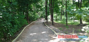 У Луцьку облаштовують кілометрову легкоатлетичну стежку у парку. ФОТО