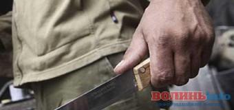 На Волині молодик вчинив розбійний напад на пенсіонерку. ФОТО