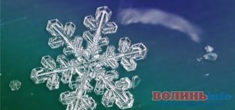 Вчені вперше виростили дві однакові сніжинки. ВІДЕО
