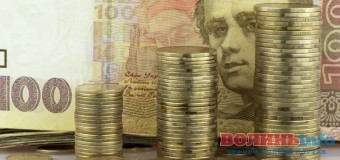 На Волині «Самопоміч» ініціює обговорення бюджетного регламенту