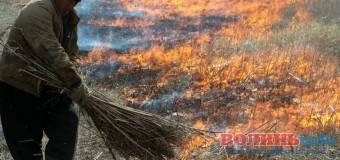 У Луцьку заборонили спалювати суху траву