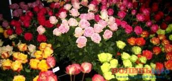 Митники вилучили 16 тонн квітів на Львівщині