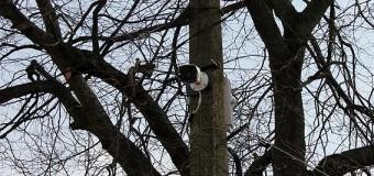 У Горохові запрацювали камери відеоспостереження