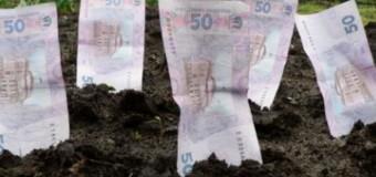 """Волинська прокуратура хоче """"забрати"""" у фермера земельну ділянку за 20 мільйонів"""