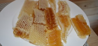 У волинському лісгоспі зібрали понад 700 кілограмів меду