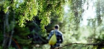 Помешкання волинських лісників досі обшукують