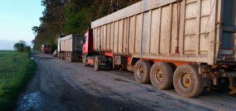 На Волині арештували фури, які вивантажували львівське сміття у лісі