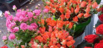 У Луцьку квітникарі обіцяють «воювати»