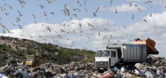 Відсьогодні у Львові розпочнеться вивезення сміття