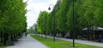 Які заходи з покращення благоустрою проводять у парку імені Лесі Українки