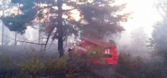 Волинян просять не провокувати пожежі на відкритих територіях