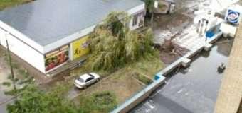 У Сумах троє людей постраждали від урагану