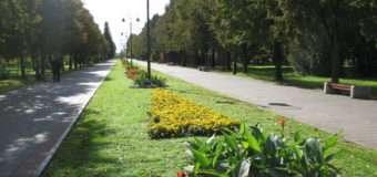 У Луцьку хочуть заборонити в'їзд автотранспорту на територію Центрального парку
