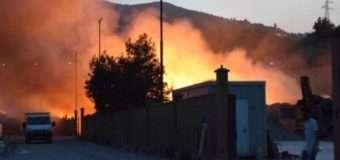 На Сицилії у підпалах підозрюють пожежників, які їх гасили