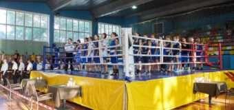 Волинянки вибороли сім медалей під час кубку України з боксу