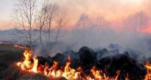 Україна входить до кола лідерів забруднення атмосфери через спалення стерні