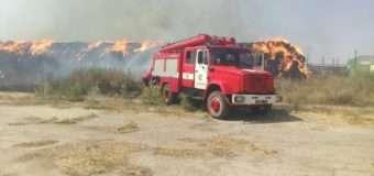 Людська легковажність призводить до масштабних пожеж у природних екосистемах