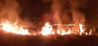 На Волині за минулу добу рятувальники загасили дві пожежі