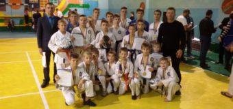 Волиняни гідно виступили на Всеукраїнському турнірі з рукопашного бою