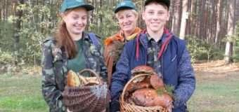 Юних волинян навчали вдалого і безпечного збору лісових дарів. ФОТО