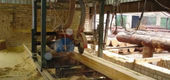 На Волині продовжують інвентаризацію пилорам, деревообробних цехів та підприємств