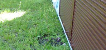 У Луцьку підприємцю відмовили у розміщенні кіоска на газоні
