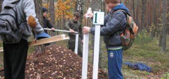 На Волині школярі допомогли обгородити мурашники. ФОТО