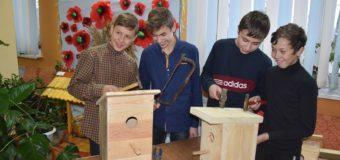 На Волині учні шкільного лісництва виготовляли шпаківні та «еко-годівнички». ФОТО