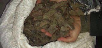 На Волині в підпільних цехах вилучили близько 200 кілограмів бурштину. ФОТО