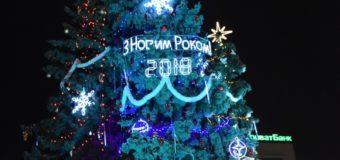 У Луцьку засяяла головна новорічна ялинка. ФОТО