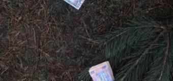 На Волині майстер лісу попався на хабарі за реалізацію незаконних ялинок. ФОТО