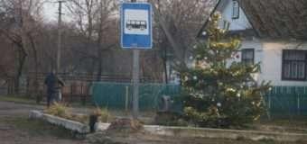 На Волині селяни біля автобусної зупинки поставили ялинку