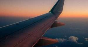 Вперше літак здійснив переліт на паливі з насіння гірчиці