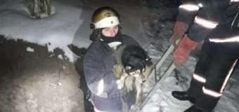У Луцькому районі рятувальники діставали собаку з глибокої ями