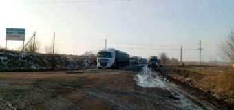 Трагедія на Волині: на цукровому заводі від наїзду вантажівки загинула молода жінка