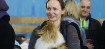 Понад 600 собак візьмуть участь у з'їзді чотирилапих в Луцьку. Фото