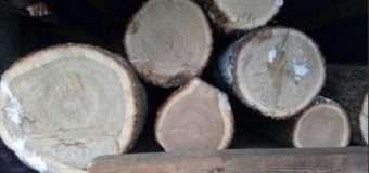 На Волині затримали автомобіль марки «MAN» завантажений краденою деревиною
