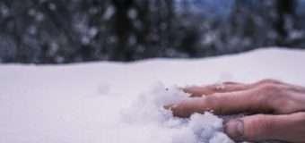 На Волині знайшли тіло молодого чоловіка, який у снігу пролежав півтора місяця