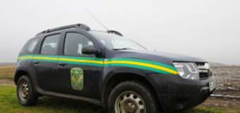 На двох автомобілях на єврономерах крадії лісу намагалися вивезти дубові колодки