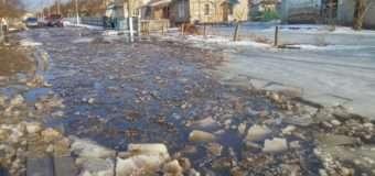 У волинському селі підтопило двори. Фото