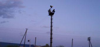 Волинянин вибрався на 20-метрову електроопору й не зміг самостійно спуститись