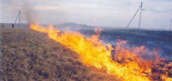 На Волині через спалювання сухої рослинності загинула пенсіонерка