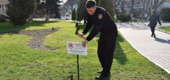 Повідомили, де у Луцьку встановили таблички про заборону вигулу собак. Фото