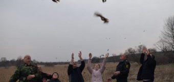 На Горохівщині на волю випустили 60 фазанів. Фото