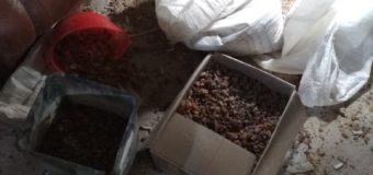 У Луцьку в складському приміщенні незаконно займалися обробкою бурштину